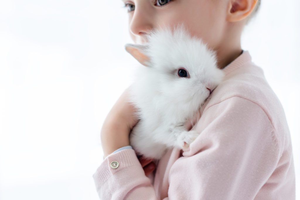 Adorable kid hugging white rabbit